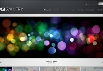 TN3 Gallery